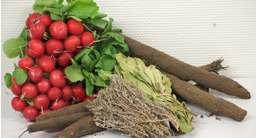 Épices et autres légumes