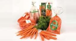 Groep wortelen